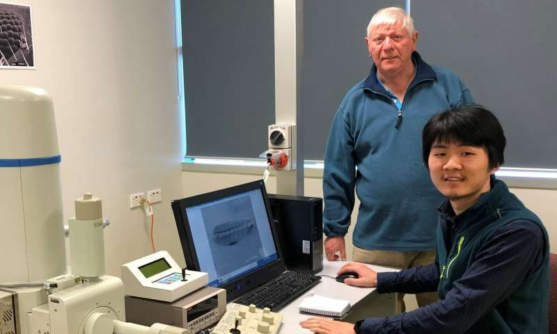 Study of microfossils maps extreme global warming and environmental change