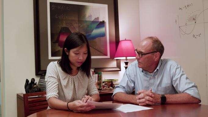 Study probing visual memory, amblyopia unveils many-layered mystery
