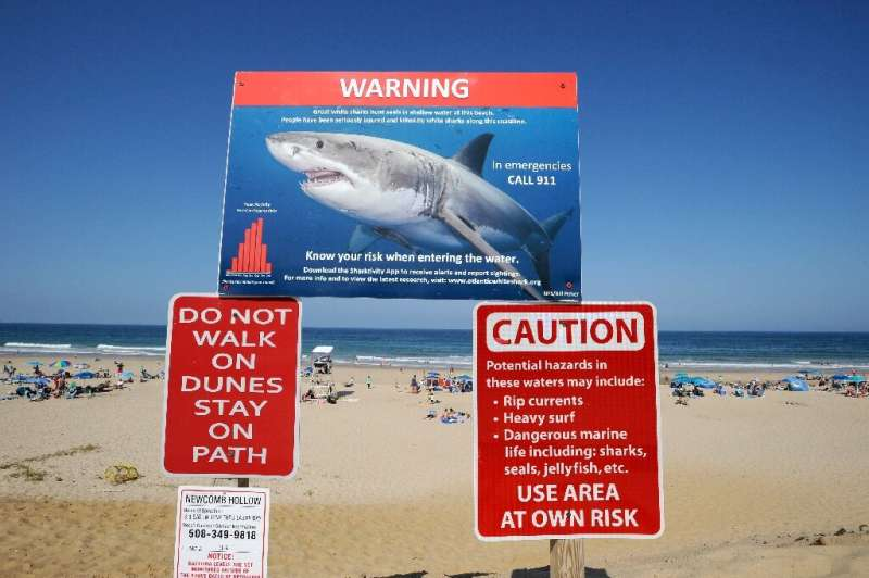 Swim and surf at your own risk, the sign at the entrance to Newcomb Hollow Beach warns