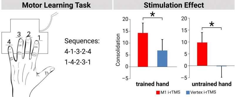 Take a break! Brain stimulation improves motor learning