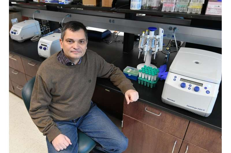Telomere research at Marshall published in Nature Communications
