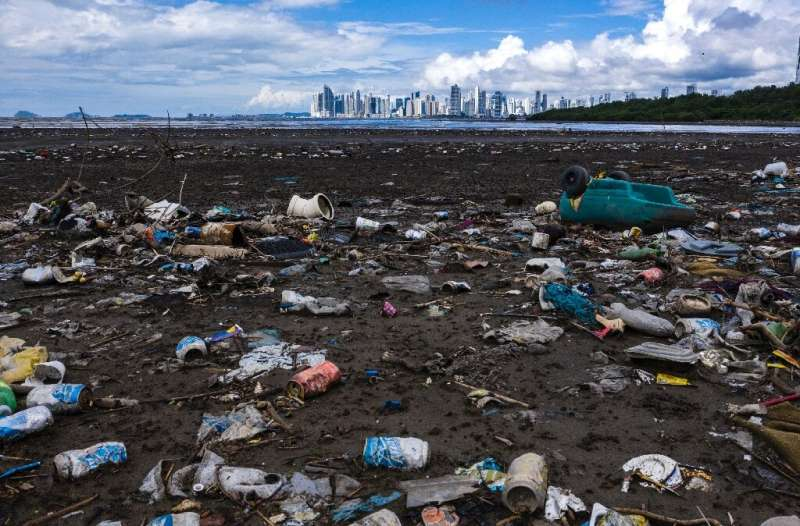 The coalition's volunteers collected nearly half a million pieces of plastic waste during a coordinated 'World Clean Up Day'