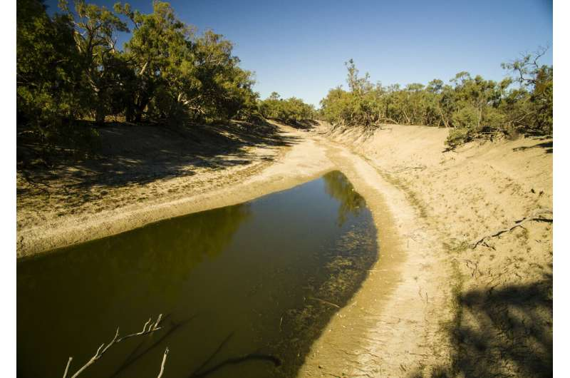 The Darling River is simply not supposed to dry out, even in drought