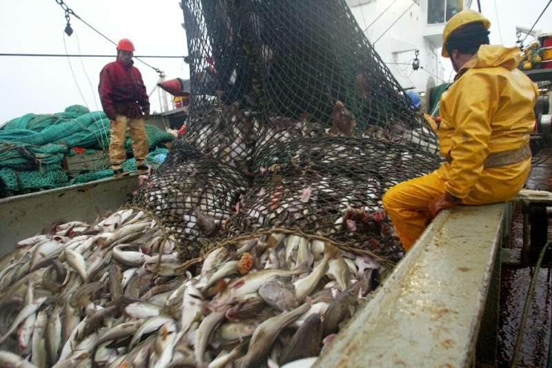 The EU is trying to save fish stocks, but also protect incomes for those in the industry