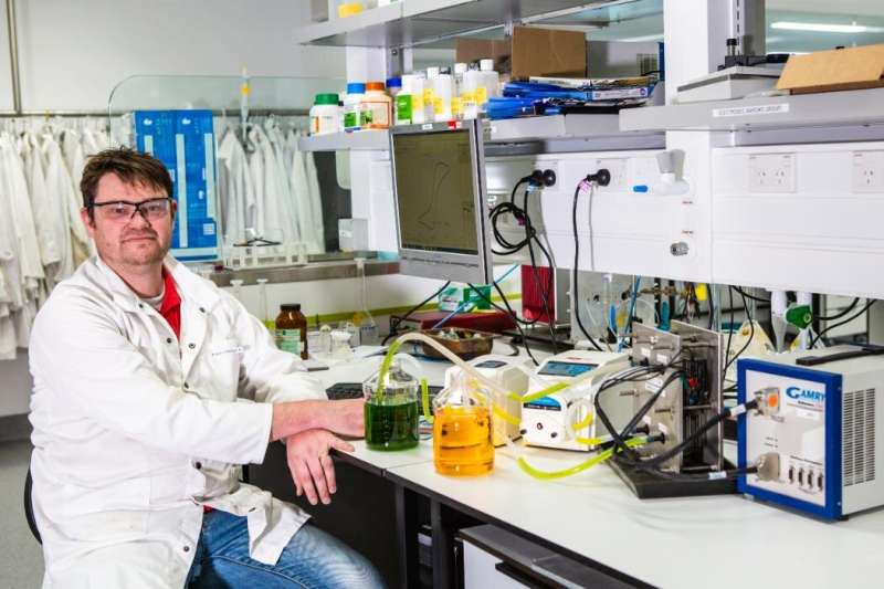 The future of continuously rechargeable batteries