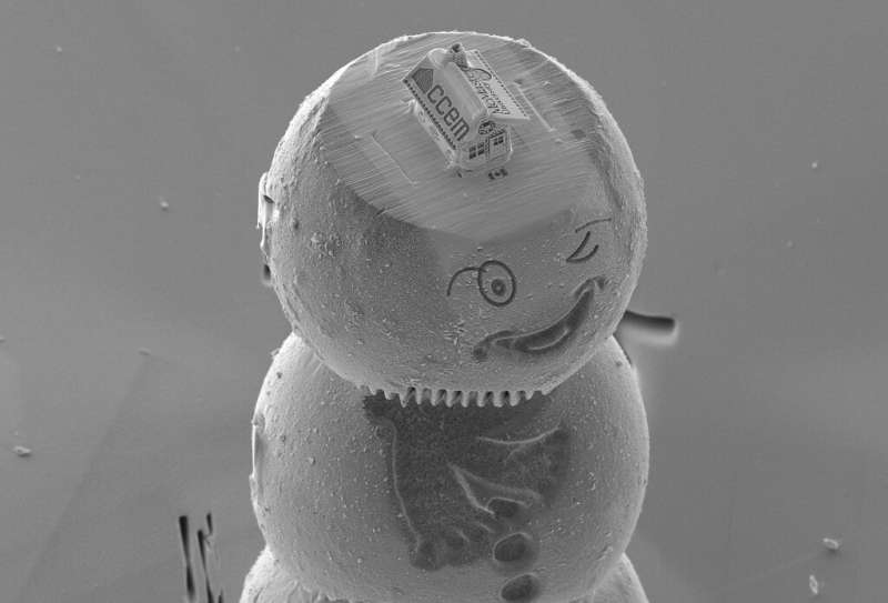The gingerbread house, etched from silicon, sits atop a cap on the head of a winking snowman made from materials used in lithium
