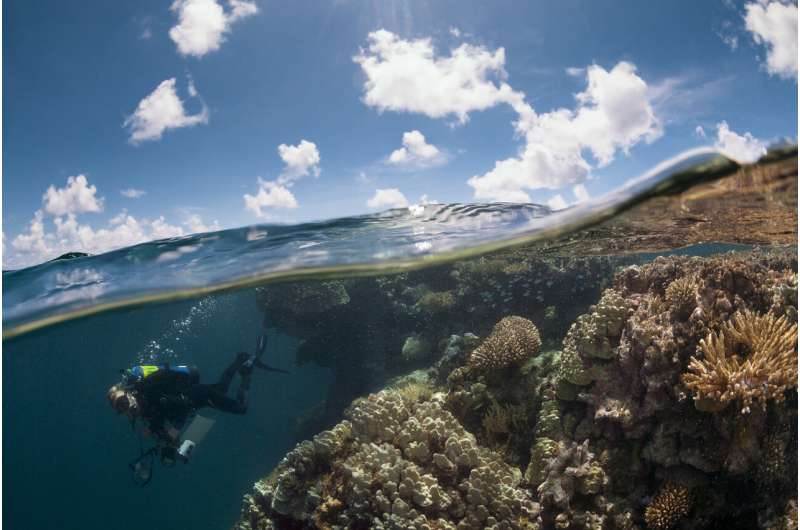 The global reef expedition: French Polynesia