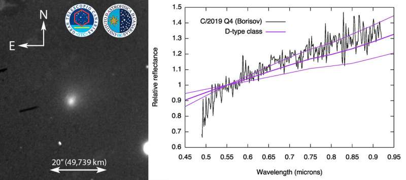 The visible spectrum of C/2019 Q4 (Borisov), the first confirmed interstellar comet