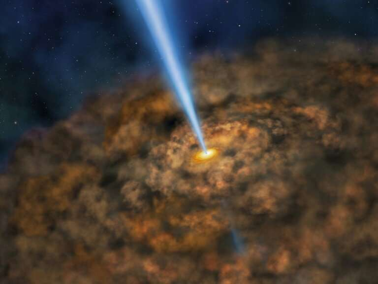 This shows a NASA artist's rendering of  the thick ring of dust that can obscure a supermassive black hole