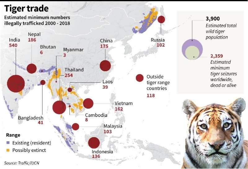 Tiger trade