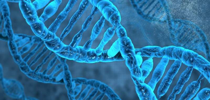 Time to step inside your DNA