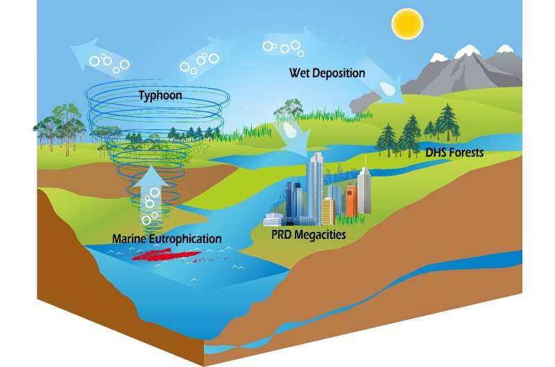Typhoons and marine eutrophication are probably the missing source of organic nitrogen in ecosystems