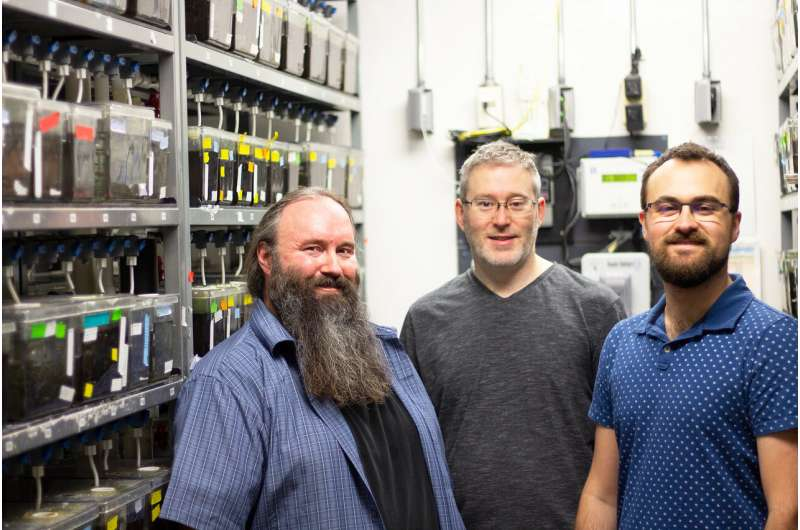 UAlberta scientists first to pinpoint a cause of pigmentary glaucoma