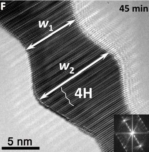 """Ultrathin gold nanoribbons with unique hexagonal crystal phase shows """"liquid-like"""" behaviour"""