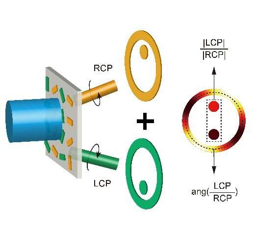 Ultra-thin optical elements directly measure polarization