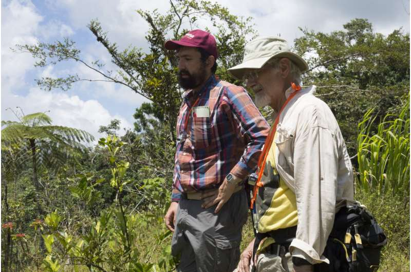 Unexpected outcomes: Damages to Puerto Rican coffee farms from Hurricane Maria varied