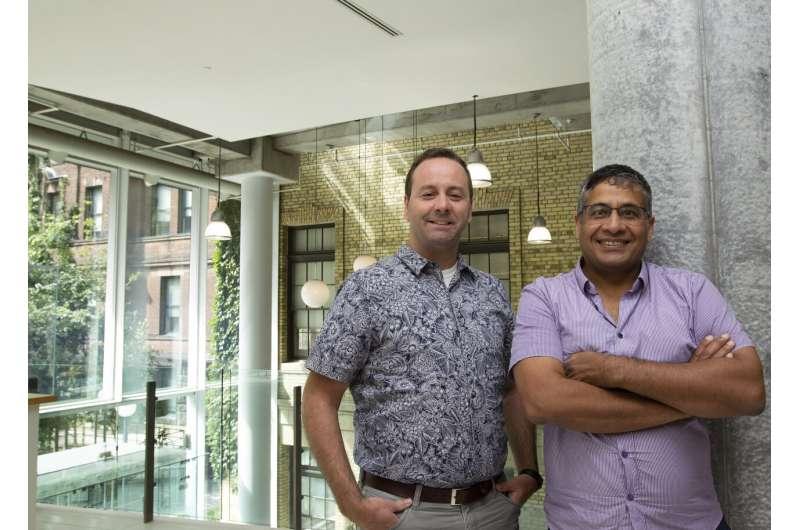 U of T researchers engineer antibodies that unlock body's regenerative potential