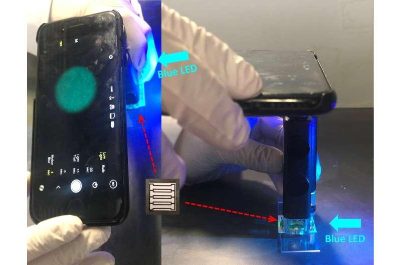 Using a smartphone to detect norovirus