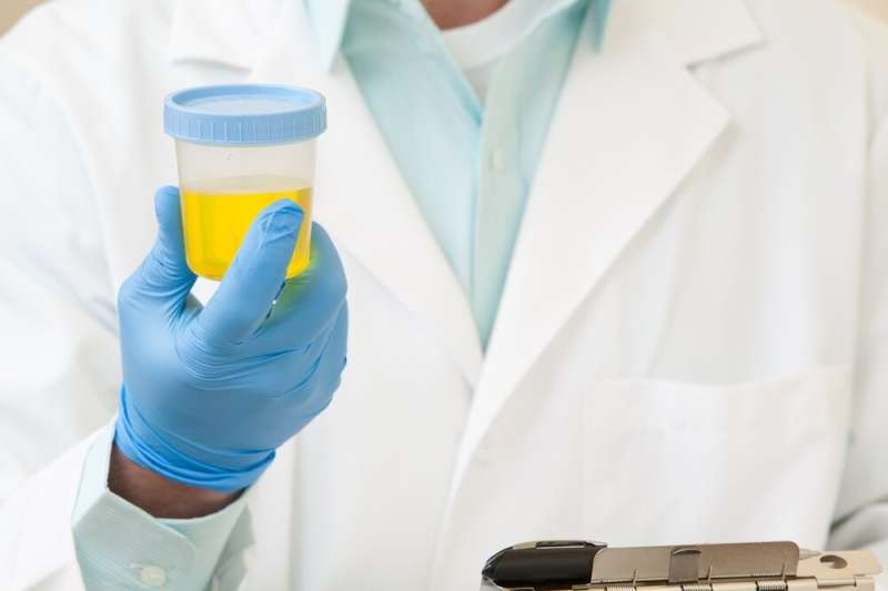 UTI discovery may lead to new treatments