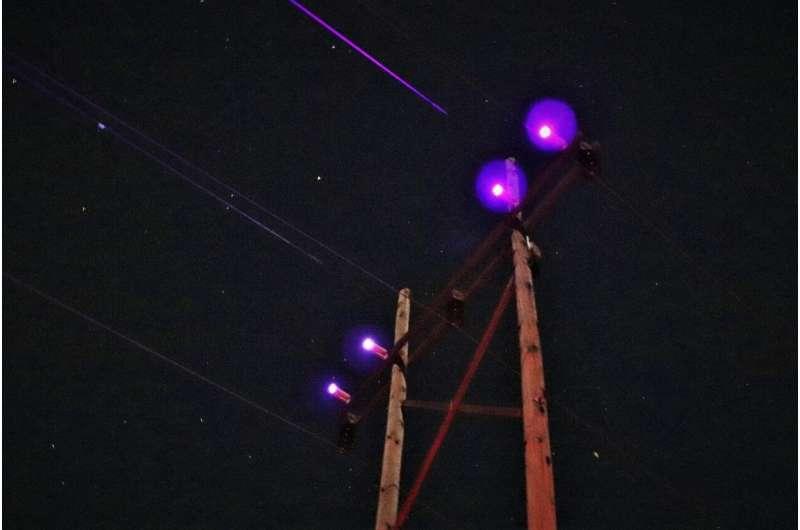 UV lights on power lines may help save Sandhill cranes