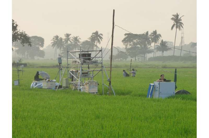 We must wake up to devastating impact of nitrogen, say scientists