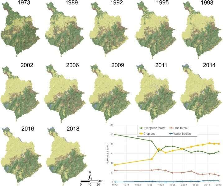 What's driving tropical deforestation? Scientists map 45 years of satellite images