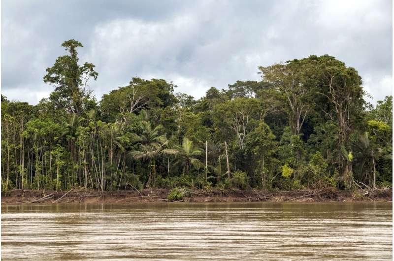 Wilderness areas halve extinction risk