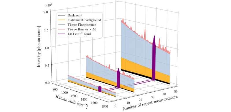 Accelerating Clinical Use of Raman Spectroscopy's Chemical Fingerprints
