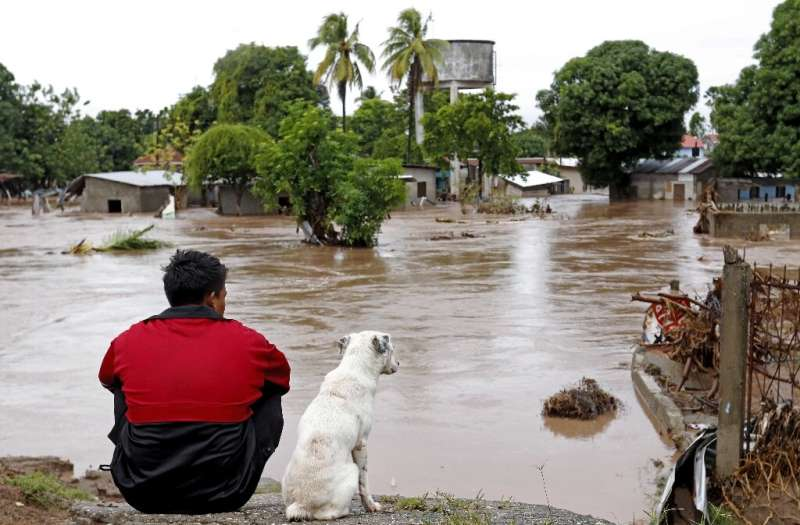 A man and his dog look at a flooded area in El Progreso, in the Honduran department of Yoro, after the passage of Hurricane Iota