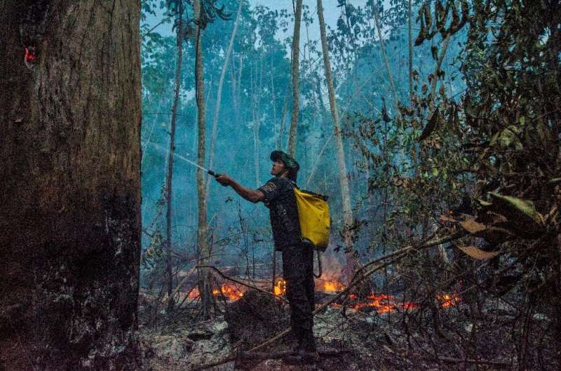 A member of an Indigenous group fights a forest fire in Brazil, which has seen an increase in wildfires over last year