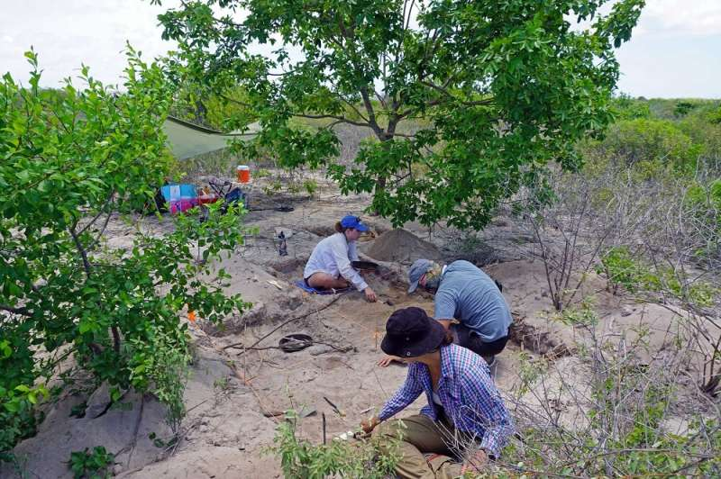 An archaeological project analyzes informal commerce in the colonial Caribbean