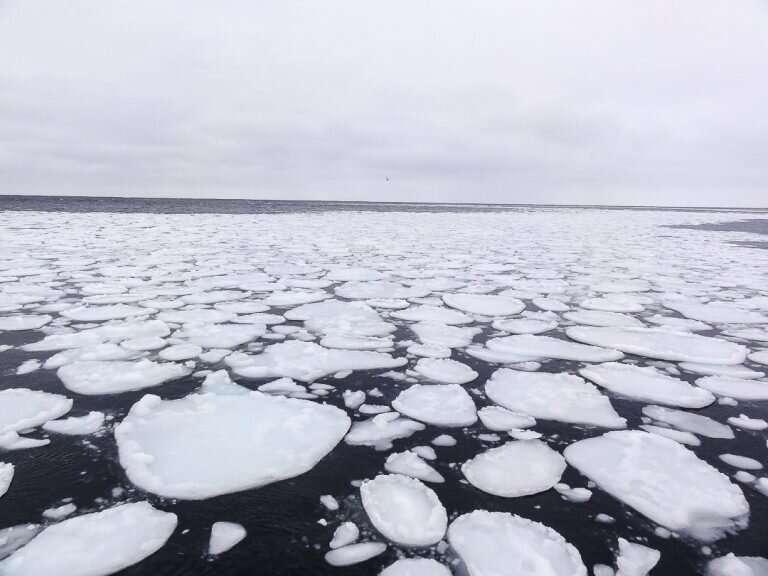 Antarctic sea-ice models improve for the next IPCC report