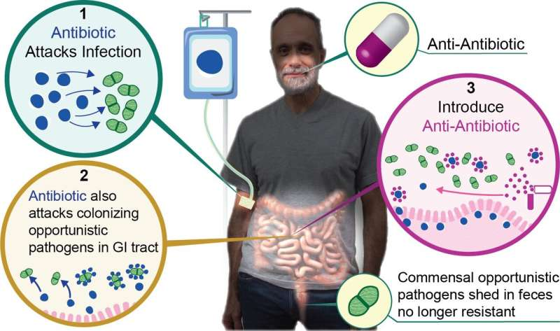 'Anti-antibiotic' allows for use of antibiotics without driving resistance