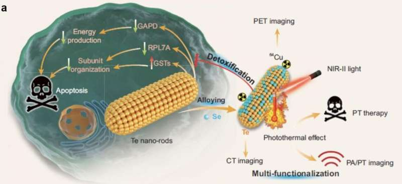 Biocompatible TeSex nano-alloys for PT/PA/CT/PET imaging-guided NIR-II-photothermal therapy