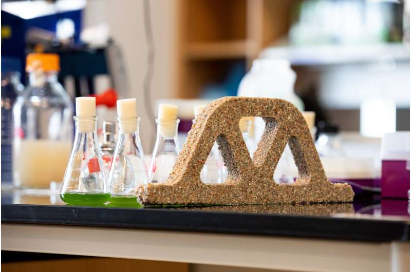 Building materials come alive with help from bacteria