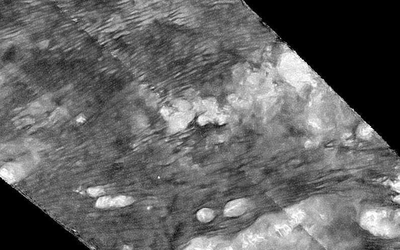 Dust devils may roam hydrocarbon dunes on Saturn's moon Titan