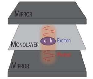 Enhanced interactions through strong light-matter coupling