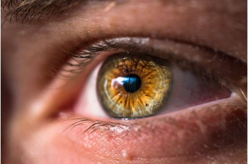 Evidence links the carotenoid lutein with eye health