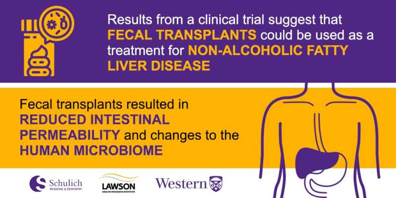 Fecal transplants show promise as treatment for non-alcoholic fatty liver disease