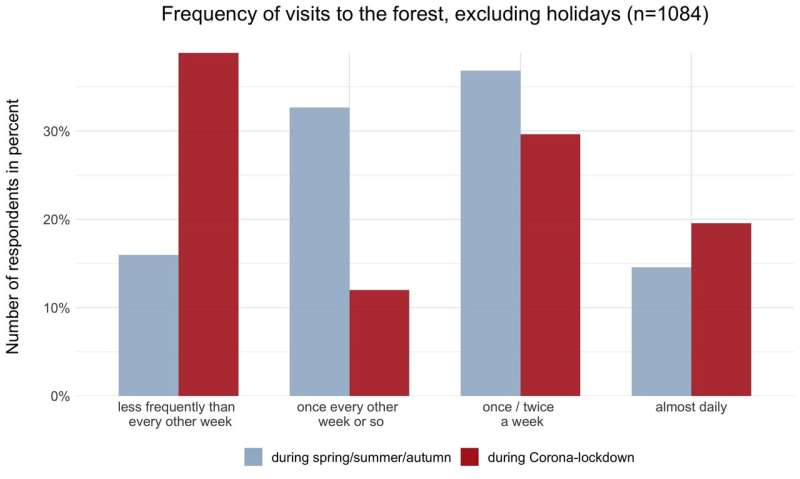 Forest visits in Switzerland affected by coronavirus lockdown