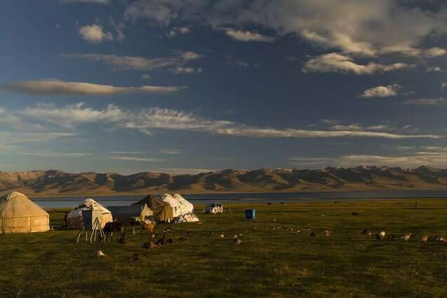 Grazing disputes in Kyrgyzstan reveal pasture access concerns for herders