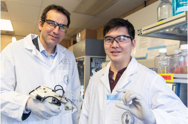 Handheld 3D skin printer demonstrates accelerated healing of large, severe burns