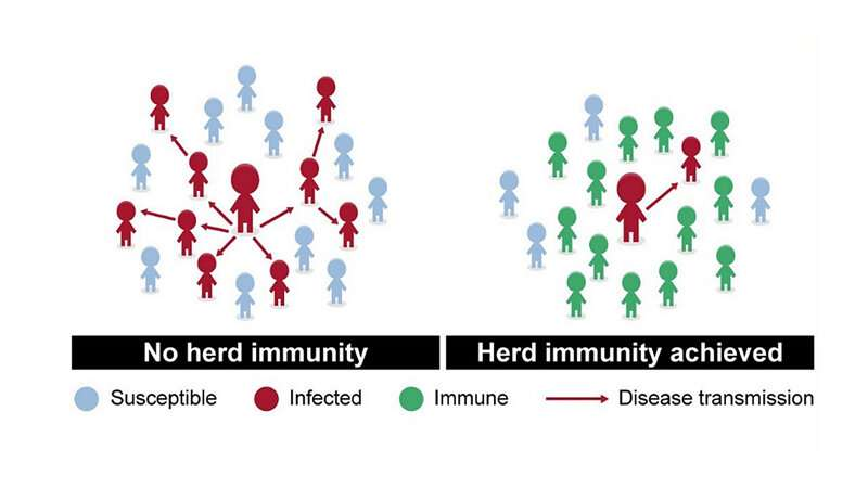Herd immunity is a dangerous strategy for fighting COVID-19, says expert