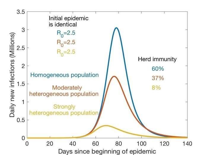 Heterogeneous populations develop herd immunity quicker