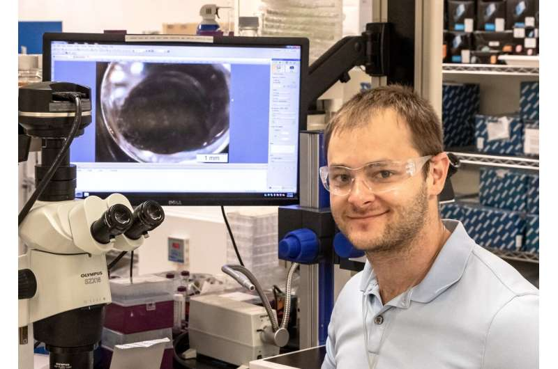 History of insightful HIV research inspires neutron scattering approach to studying COVID-19