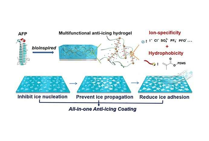 Hydrogel coating prevents ice formation in 3 ways