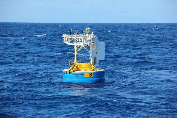 Impacts of COVID-19 emissions reductions remain murky in the oceans
