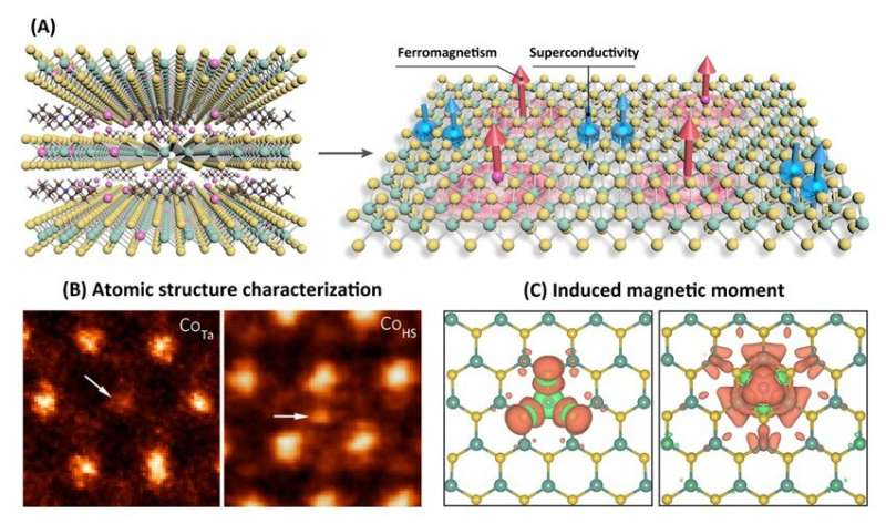 Incorporating ferromagnetism and superconductivity together in a single layer of molecular superlattice