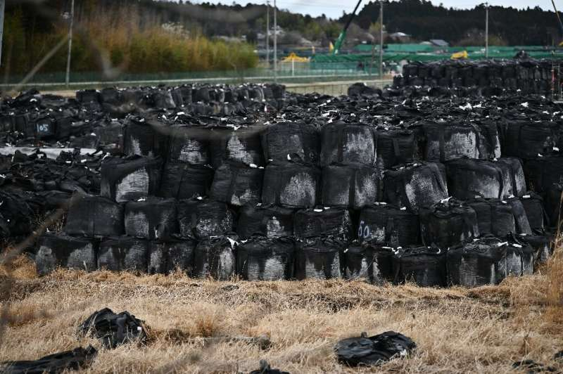 Japan's government has carried out extensive decontamination efforts in the area affected by the disaster, removing topsoil