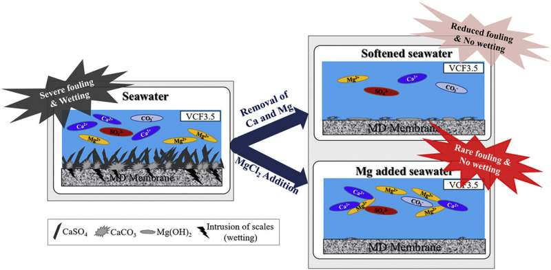 KIST ensures stability of desalination process with magnesium